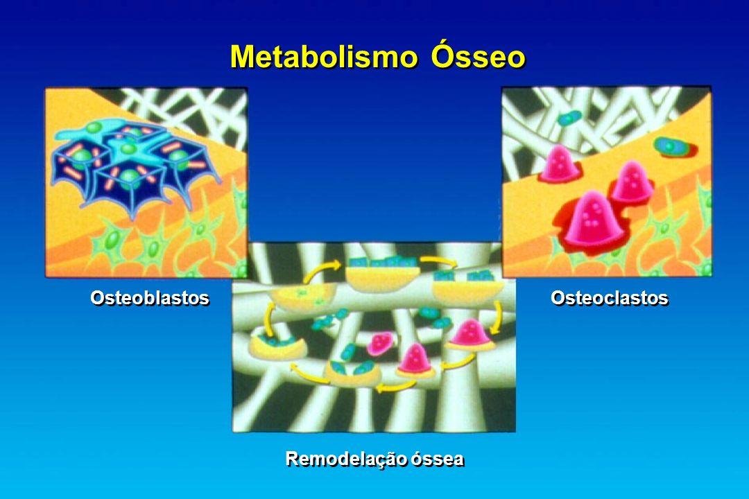 Metabolismo Ósseo Osteoblastos Osteoclastos Remodelação óssea