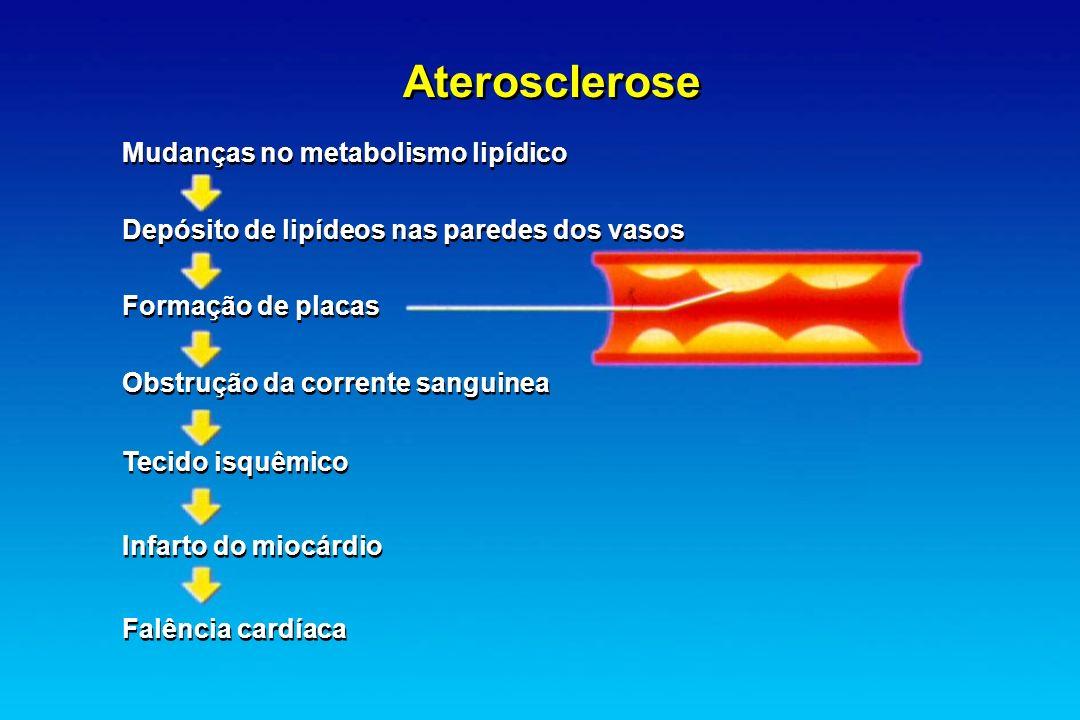 Mudanças no metabolismo lipídico Depósito de lipídeos nas paredes dos vasos Formação de placas Obstrução da corrente sanguinea Tecido isquêmico Infart