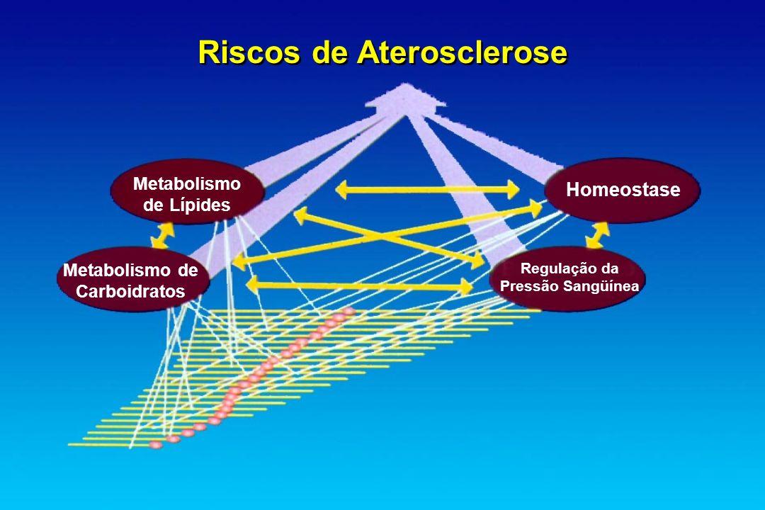 Riscos de Aterosclerose Metabolismo de Carboidratos Homeostase Regulação da Pressão Sangüínea Metabolismo de Lípides