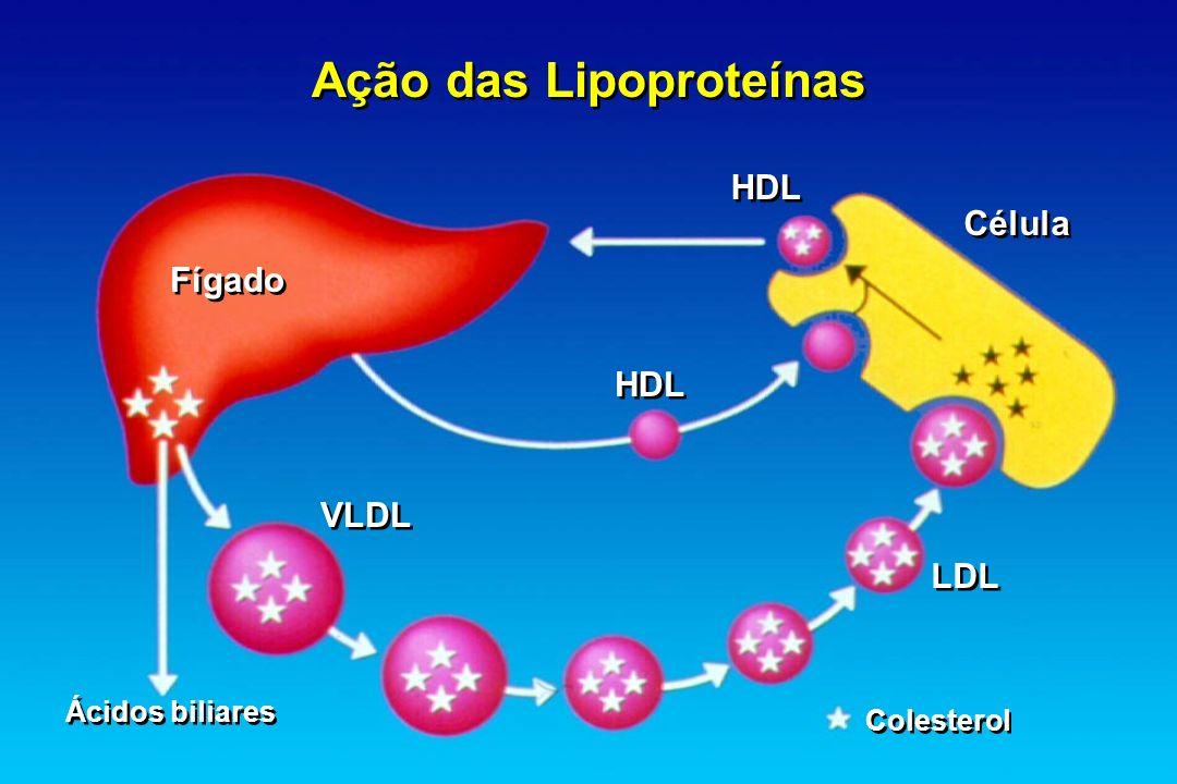 Ação das Lipoproteínas HDL Célula HDL VLDL LDL Fígado Ácidos biliares Colesterol