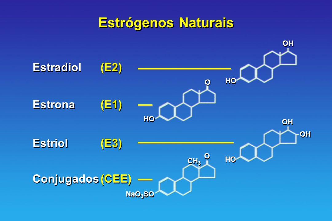 Estrógenos Naturais Estradiol(E2) Estrona(E1) Estriol(E3) Conjugados(CEE) Estradiol(E2) Estrona(E1) Estriol(E3) Conjugados(CEE) OH HO OH HO O O O O Na