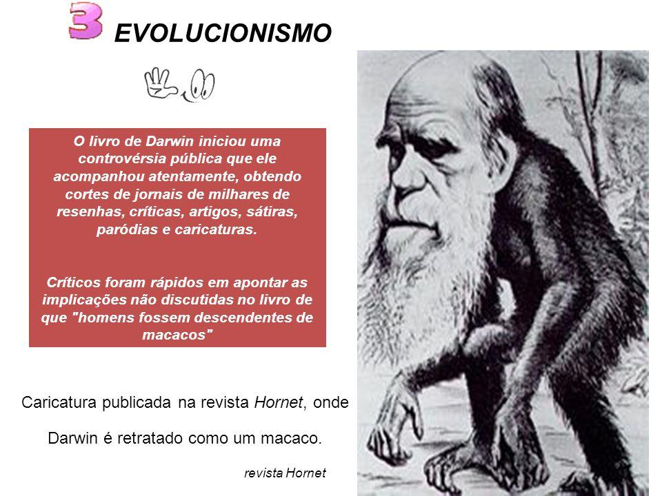 Caricatura publicada na revista Hornet, onde Darwin é retratado como um macaco.