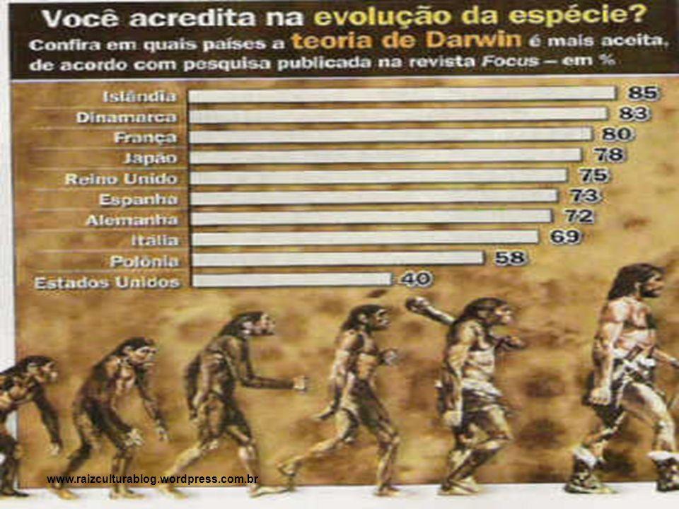 Após uma longa evolução, que se iniciou há cerca de 1 milhão de anos, os descendentes dos primeiros hominídeos espalharam-se pela Ásia, África e Europa.