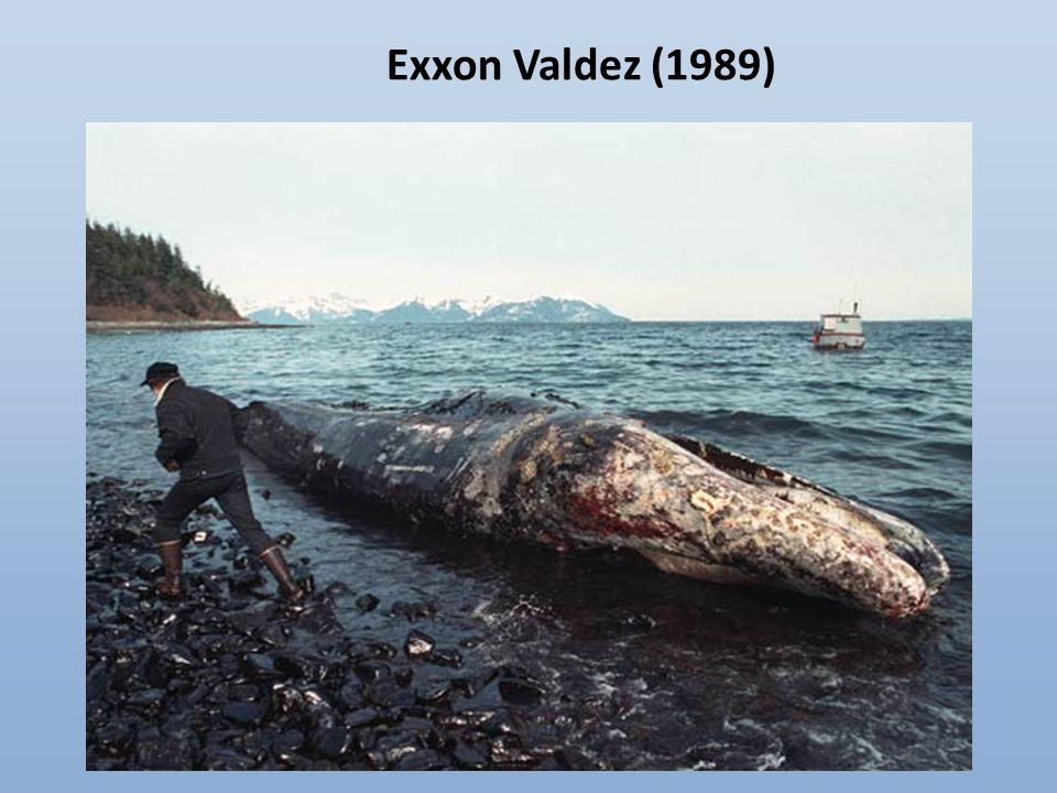 Exxon Valdez (1989)