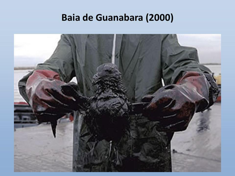 Golfo do México (2010)