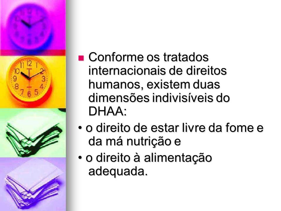 Conforme os tratados internacionais de direitos humanos, existem duas dimensões indivisíveis do DHAA: Conforme os tratados internacionais de direitos