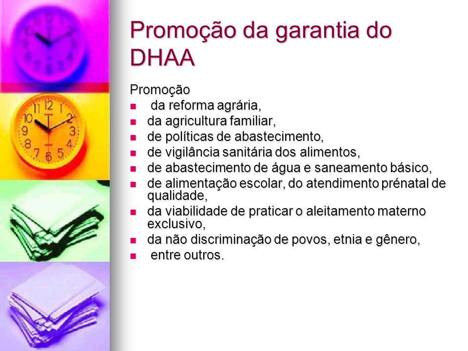 Promoção da garantia do DHAA Promoção da reforma agrária, da reforma agrária, da agricultura familiar, da agricultura familiar, de políticas de abaste