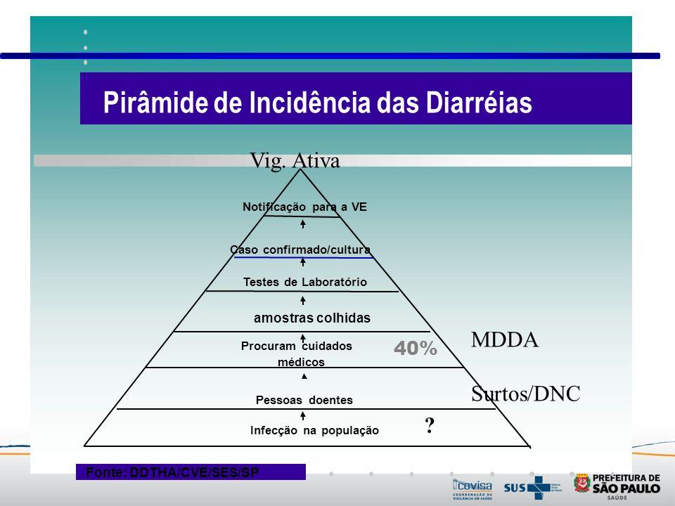 Fonte: DDTHA/CVE/SES/SP Vig. Ativa MDDA Surtos/DNC