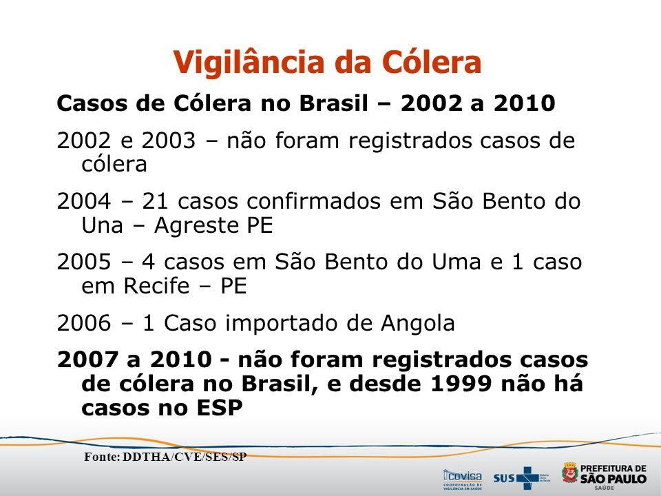 Casos de Cólera no Brasil – 2002 a 2010 2002 e 2003 – não foram registrados casos de cólera 2004 – 21 casos confirmados em São Bento do Una – Agreste