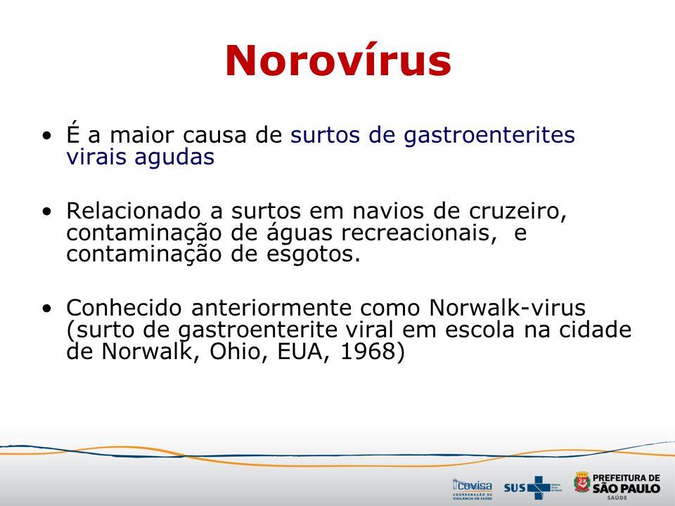 Norovírus É a maior causa de surtos de gastroenterites virais agudas Relacionado a surtos em navios de cruzeiro, contaminação de águas recreacionais,