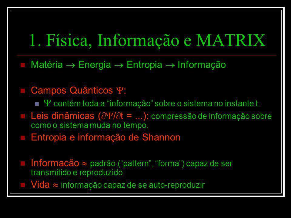 1. Física, Informação e MATRIX Matéria Energia Entropia Informação Campos Quânticos : contém toda a informação sobre o sistema no instante t. Leis din