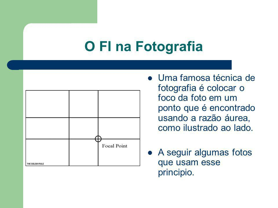 O FI na Fotografia Uma famosa técnica de fotografia é colocar o foco da foto em um ponto que é encontrado usando a razão áurea, como ilustrado ao lado