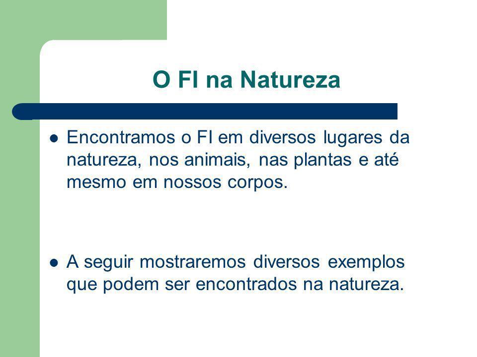 O FI na Natureza Encontramos o FI em diversos lugares da natureza, nos animais, nas plantas e até mesmo em nossos corpos. A seguir mostraremos diverso