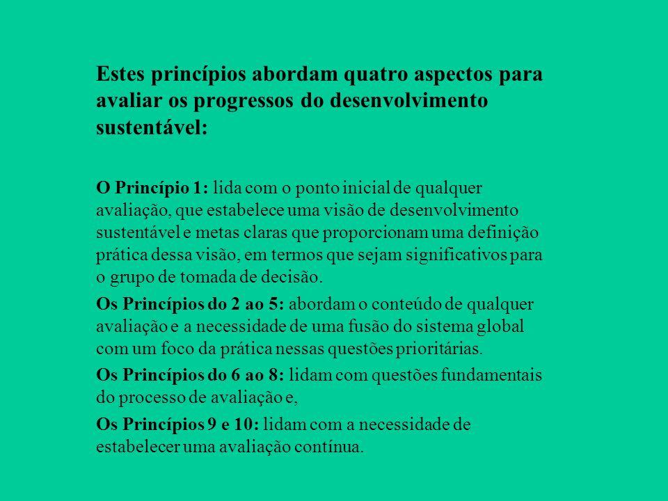Estes princípios abordam quatro aspectos para avaliar os progressos do desenvolvimento sustentável: O Princípio 1: lida com o ponto inicial de qualquer avaliação, que estabelece uma visão de desenvolvimento sustentável e metas claras que proporcionam uma definição prática dessa visão, em termos que sejam significativos para o grupo de tomada de decisão.