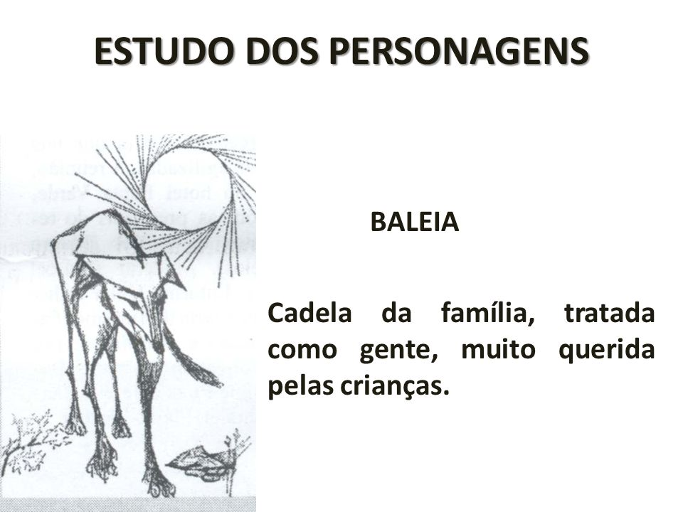 ESTUDO DOS PERSONAGENS BALEIA Cadela da família, tratada como gente, muito querida pelas crianças.