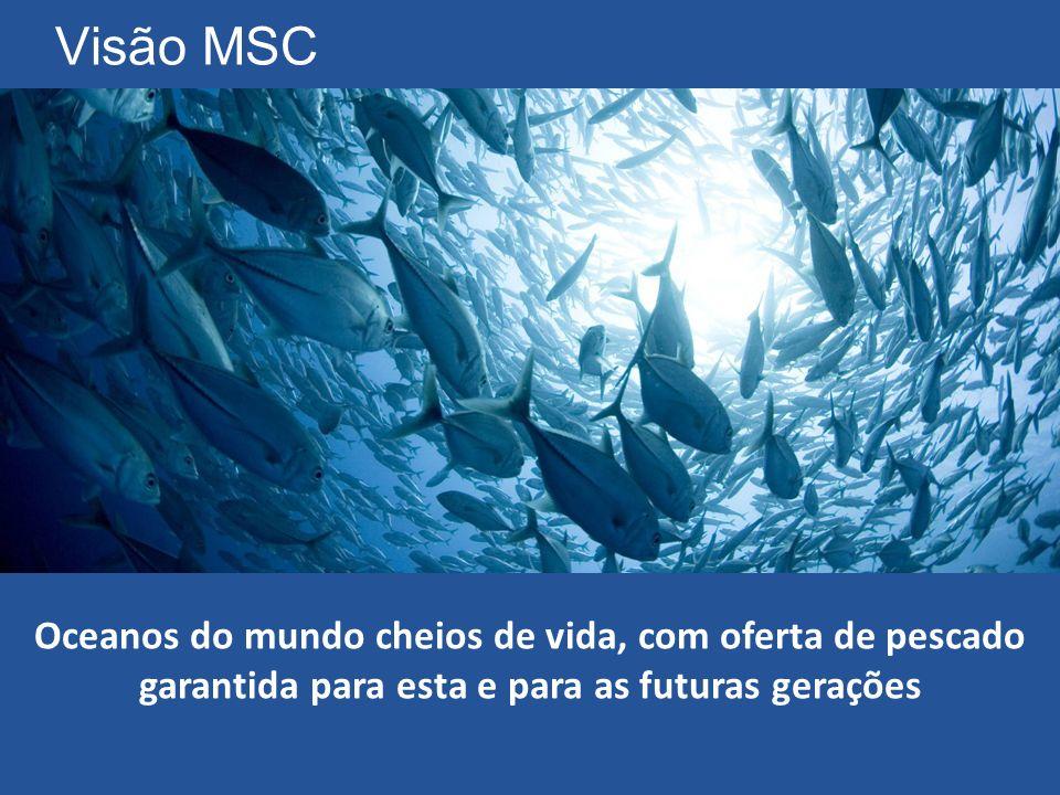 Visão MSC Oceanos do mundo cheios de vida, com oferta de pescado garantida para esta e para as futuras gerações