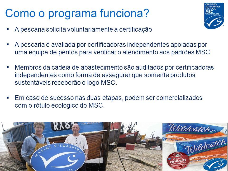 A pescaria solicita voluntariamente a certificação A pescaria é avaliada por certificadoras independentes apoiadas por uma equipe de peritos para veri