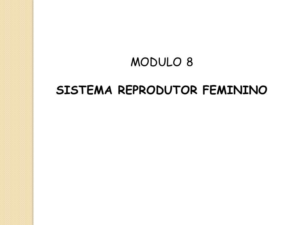 MODULO 8 SISTEMA REPRODUTOR FEMININO