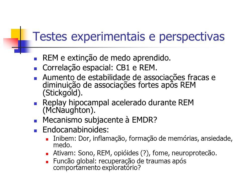 Testes experimentais e perspectivas REM e extinção de medo aprendido.