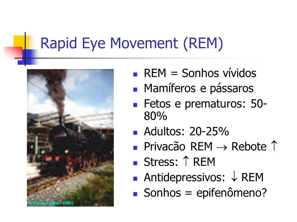 Rapid Eye Movement (REM) REM = Sonhos vívidos Mamíferos e pássaros Fetos e prematuros: 50- 80% Adultos: 20-25% Privacão REM Rebote Stress: REM Antidepressivos: REM Sonhos = epifenômeno