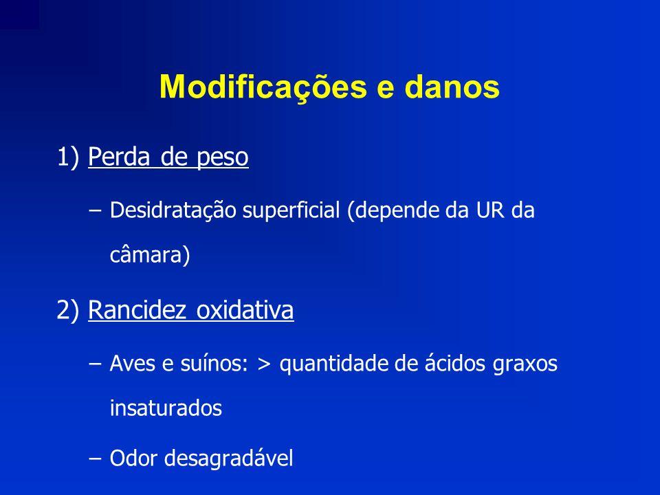 Modificações e danos 1) Perda de peso –Desidratação superficial (depende da UR da câmara) 2) Rancidez oxidativa –Aves e suínos: > quantidade de ácidos