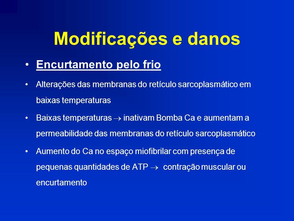 Modificações e danos Encurtamento pelo frio Alterações das membranas do retículo sarcoplasmático em baixas temperaturas Baixas temperaturas inativam B