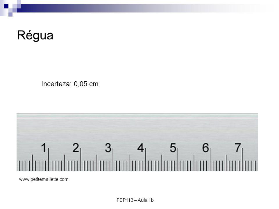 FEP113 – Aula 1b Régua Incerteza: 0,05 cm www.petitemallette.com