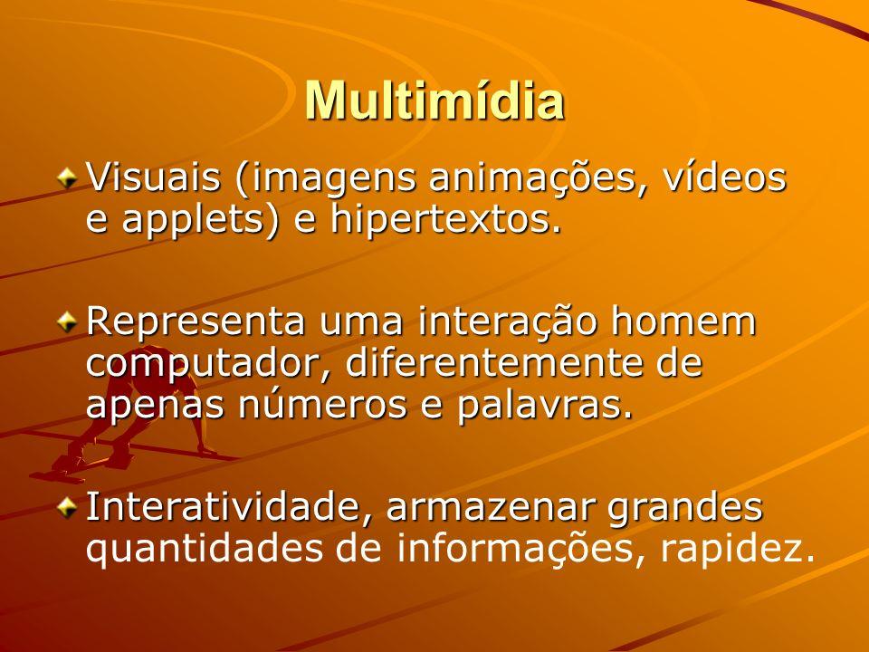 Multimídia Visuais (imagens animações, vídeos e applets) e hipertextos. Representa uma interação homem computador, diferentemente de apenas números e