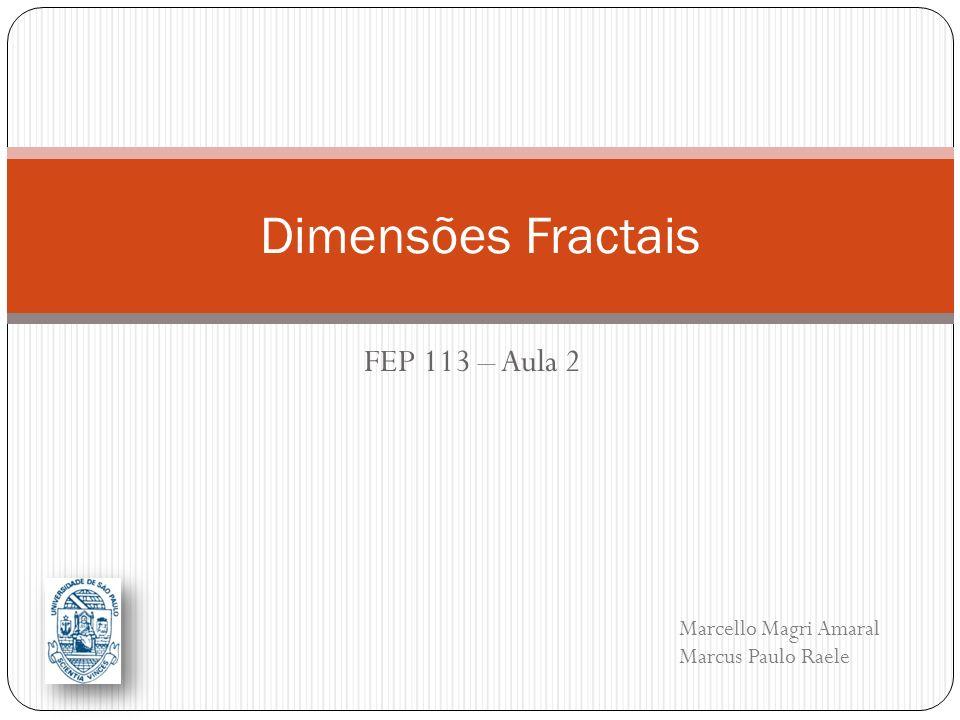 FEP 113 – Aula 2 Dimensões Fractais Marcello Magri Amaral Marcus Paulo Raele