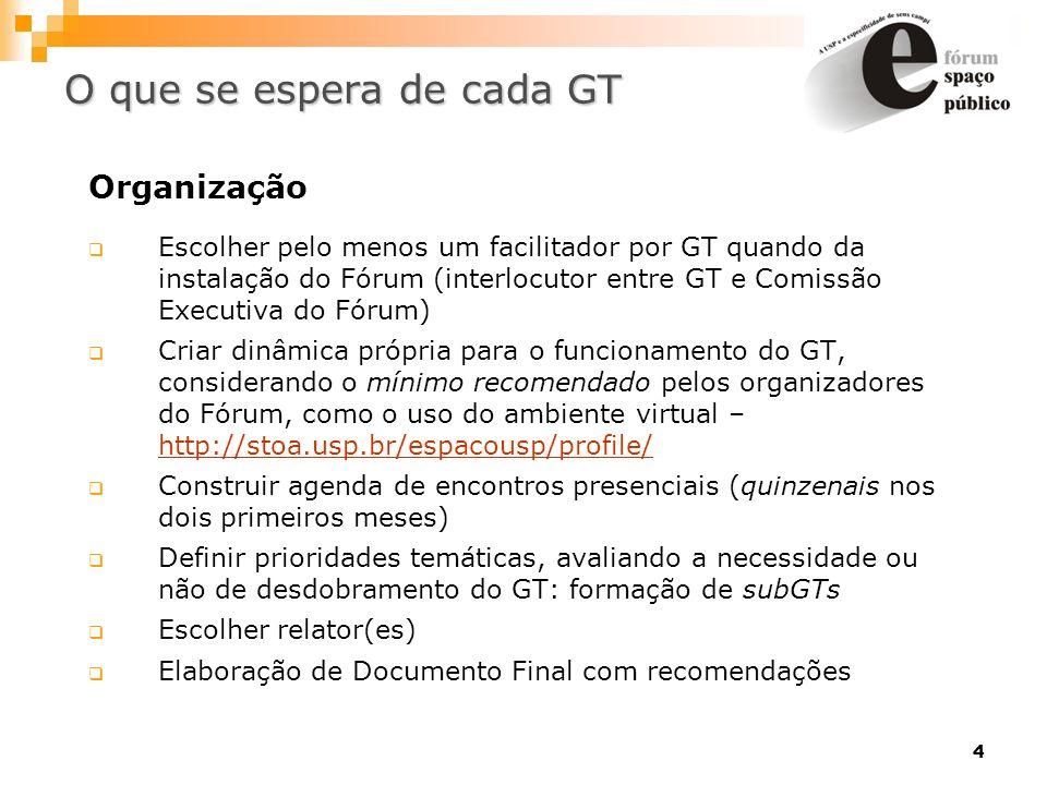 4 Organização Escolher pelo menos um facilitador por GT quando da instalação do Fórum (interlocutor entre GT e Comissão Executiva do Fórum) Criar dinâ