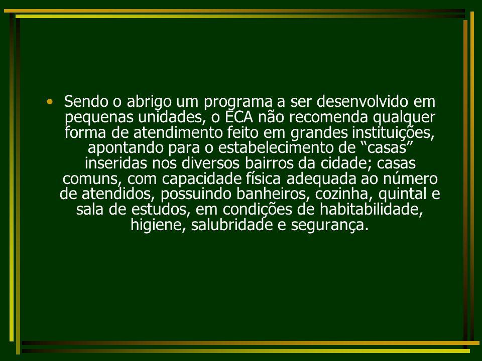 Sendo o abrigo um programa a ser desenvolvido em pequenas unidades, o ECA não recomenda qualquer forma de atendimento feito em grandes instituições, a