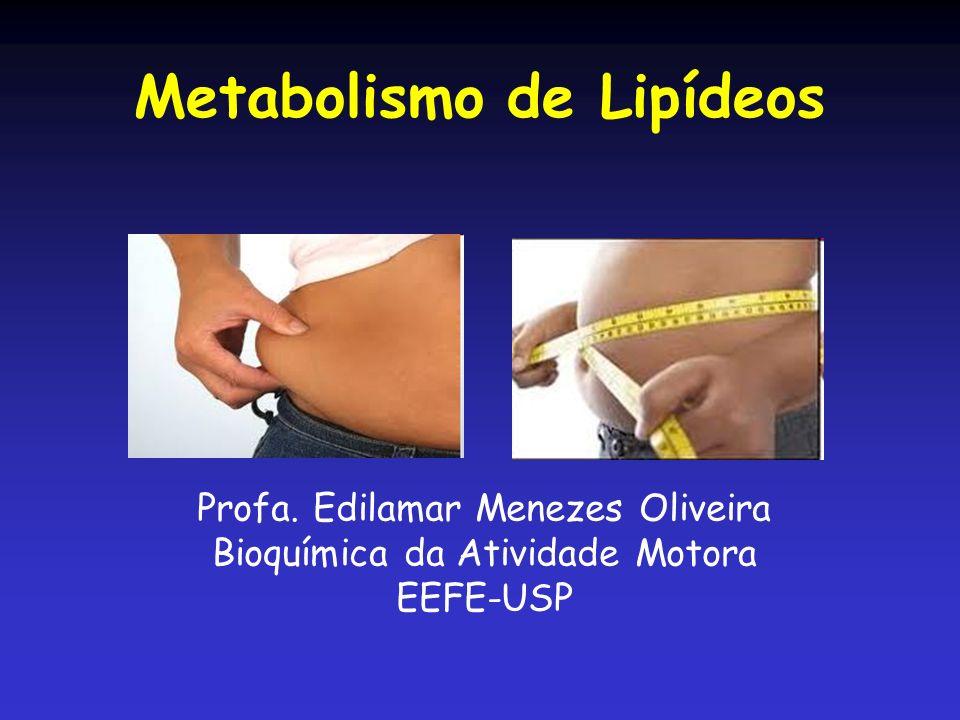 Metabolismo de Lipídeos Profa. Edilamar Menezes Oliveira Bioquímica da Atividade Motora EEFE-USP