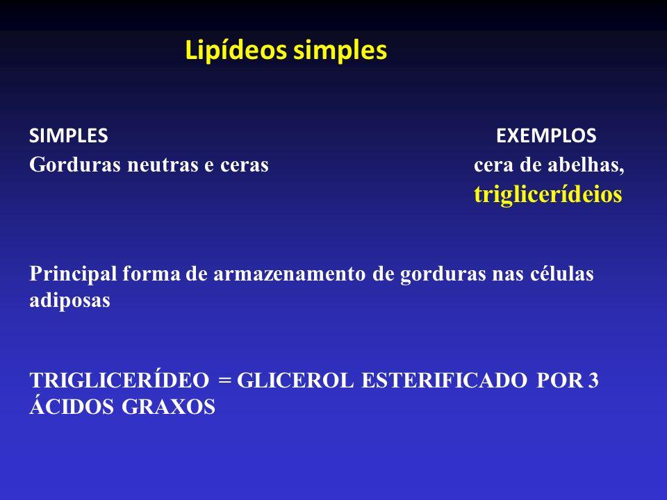 Lipídeos simples SIMPLES EXEMPLOS Gorduras neutras e ceras cera de abelhas, triglicerídeios Principal forma de armazenamento de gorduras nas células a