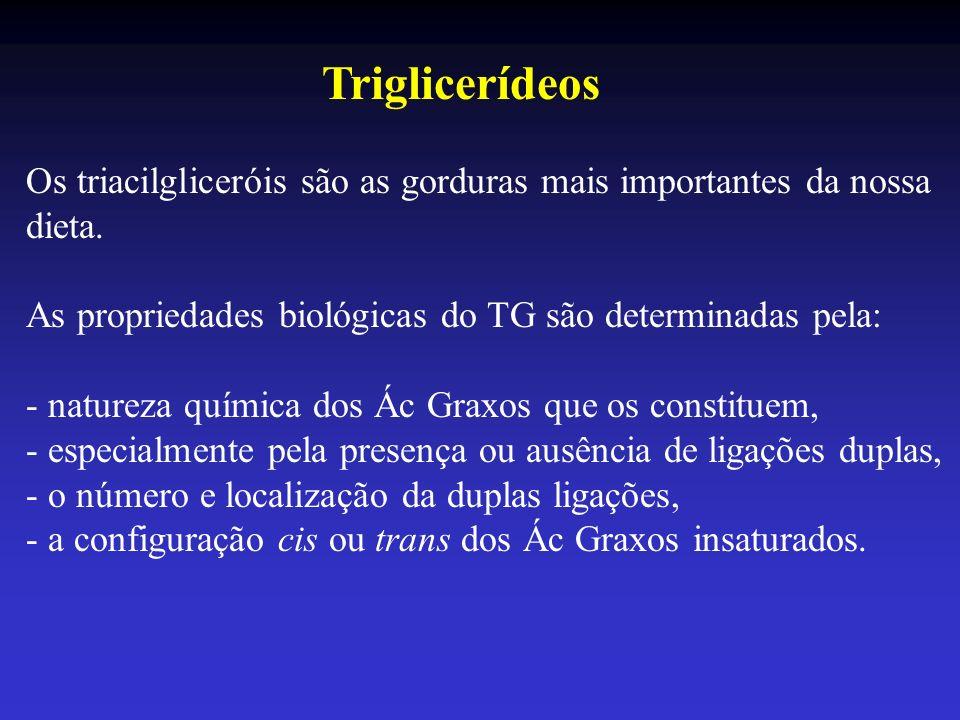Triglicerídeos Os triacilgliceróis são as gorduras mais importantes da nossa dieta. As propriedades biológicas do TG são determinadas pela: - natureza