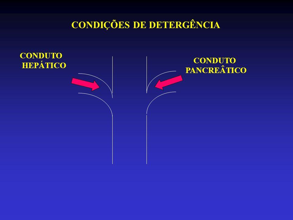 CONDUTO PANCREÂTICO CONDUTO HEPÁTICO CONDIÇÕES DE DETERGÊNCIA