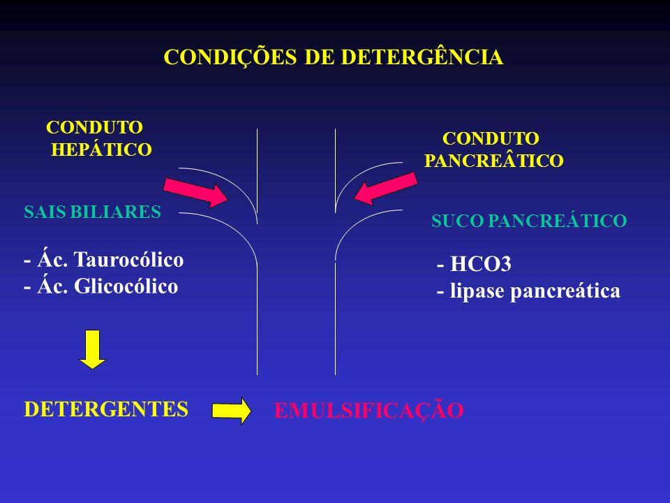 CONDUTO PANCREÂTICO CONDUTO HEPÁTICO CONDIÇÕES DE DETERGÊNCIA SAIS BILIARES SUCO PANCREÁTICO - Ác. Taurocólico - Ác. Glicocólico - HCO3 - lipase pancr