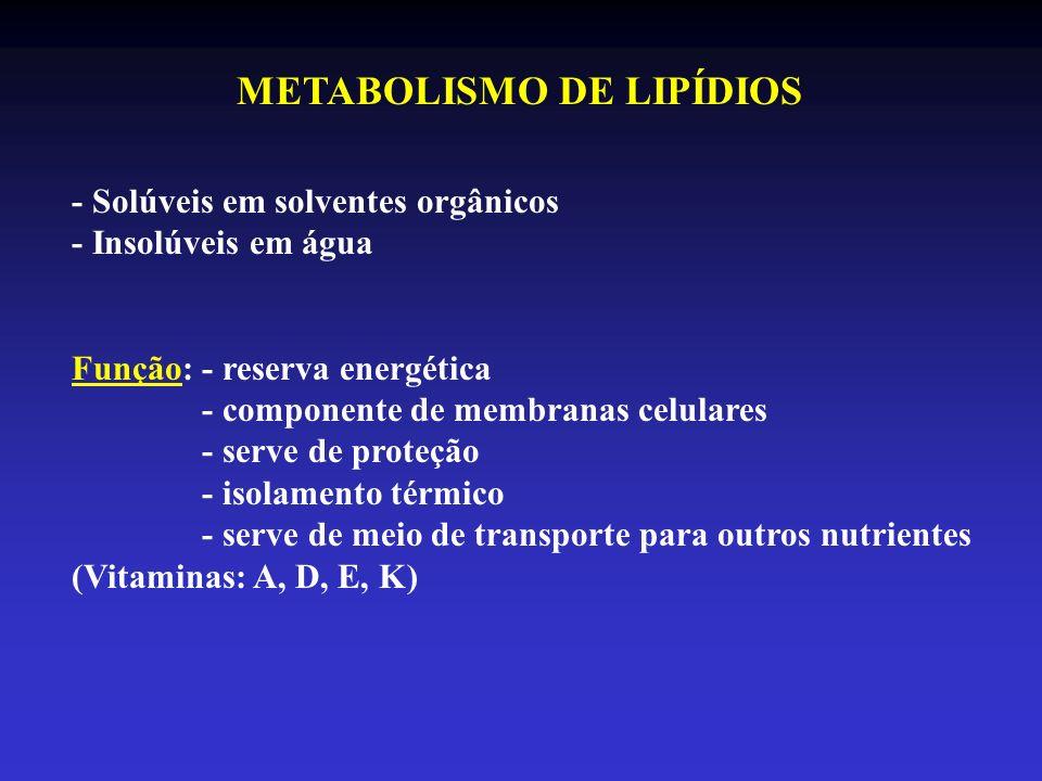 METABOLISMO DE LIPÍDIOS - Solúveis em solventes orgânicos - Insolúveis em água Função: - reserva energética - componente de membranas celulares - serv