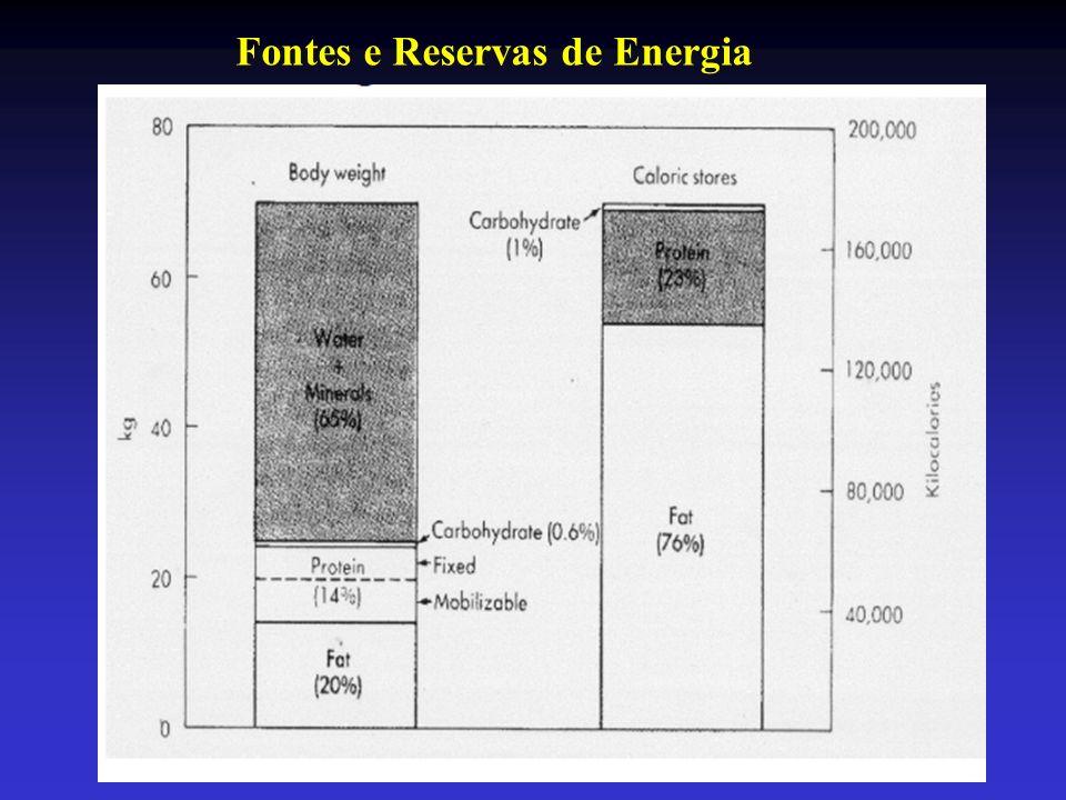 Fontes e Reservas de Energia