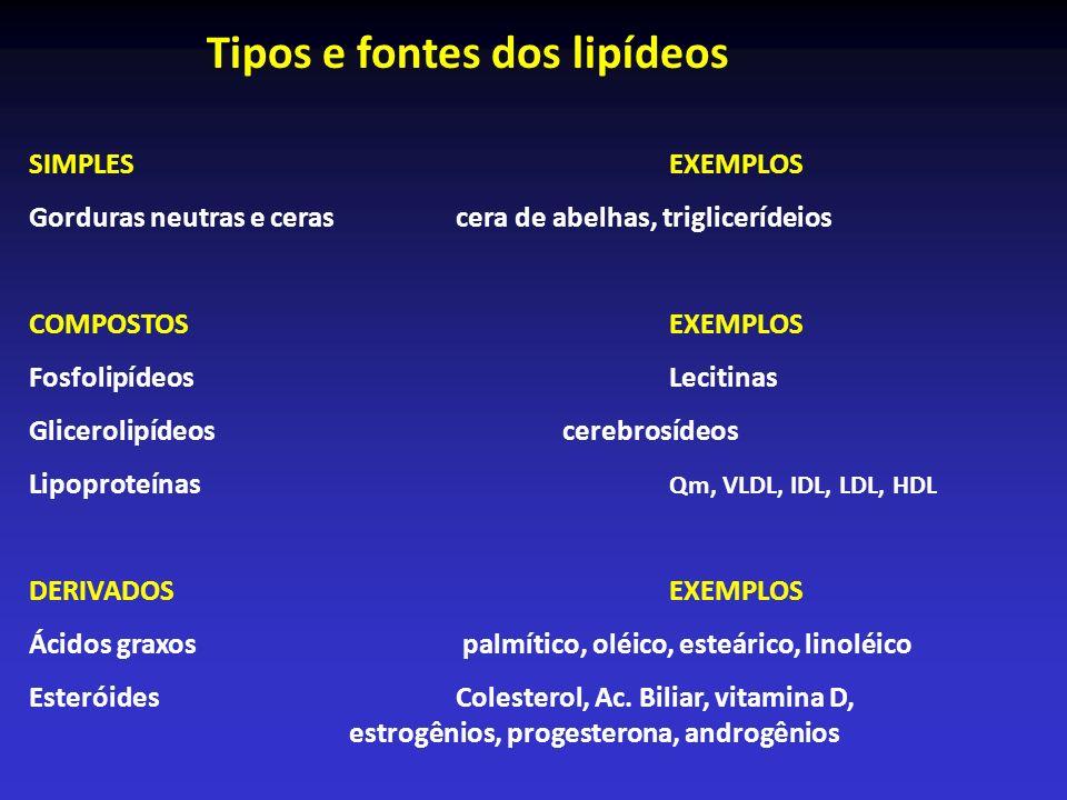 Tipos e fontes dos lipídeos SIMPLES EXEMPLOS Gorduras neutras e ceras cera de abelhas, triglicerídeios COMPOSTOS EXEMPLOS Fosfolipídeos Lecitinas Glic