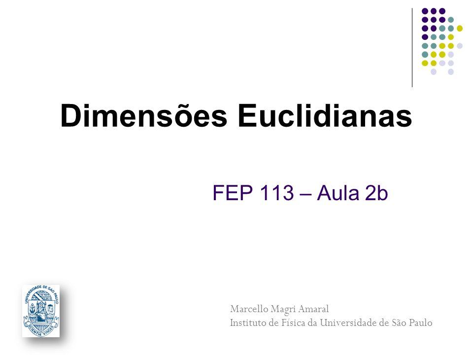 FEP 113 – Aula 2b Dimensões Euclidianas Marcello Magri Amaral Instituto de Física da Universidade de São Paulo