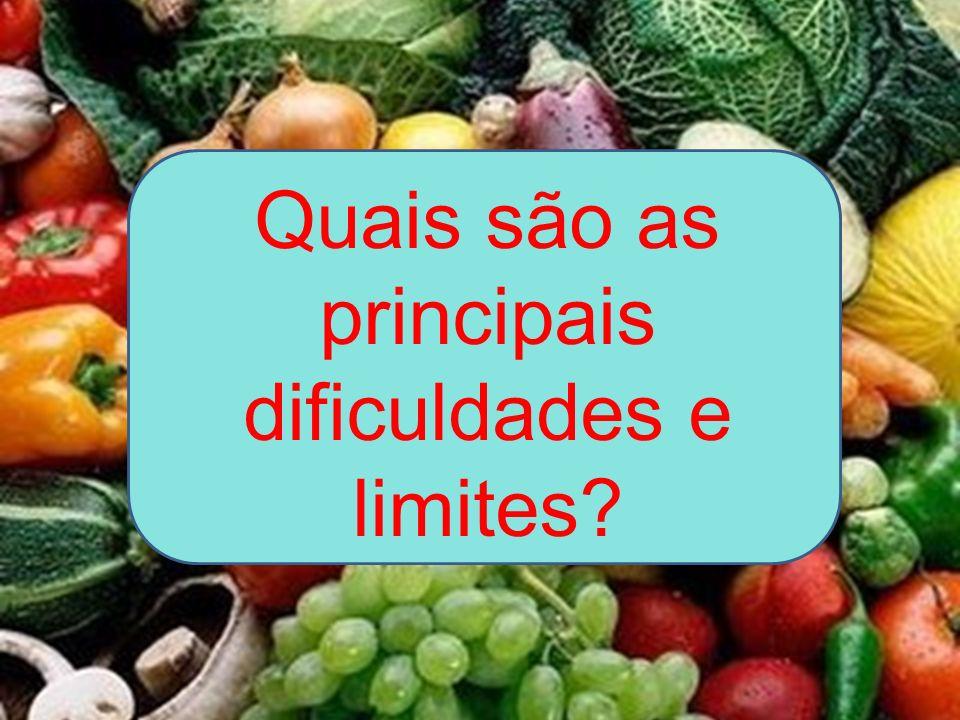 Quais são as principais dificuldades e limites?