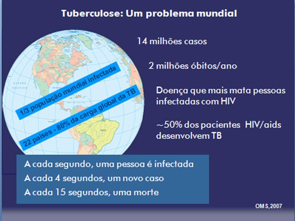 Brasil- 14º lugar entre os 23 países responsáveis por 80% do total de casos no mundo 2001- 81.432 casos novos coeficiente de incidência- 47,2/100.000