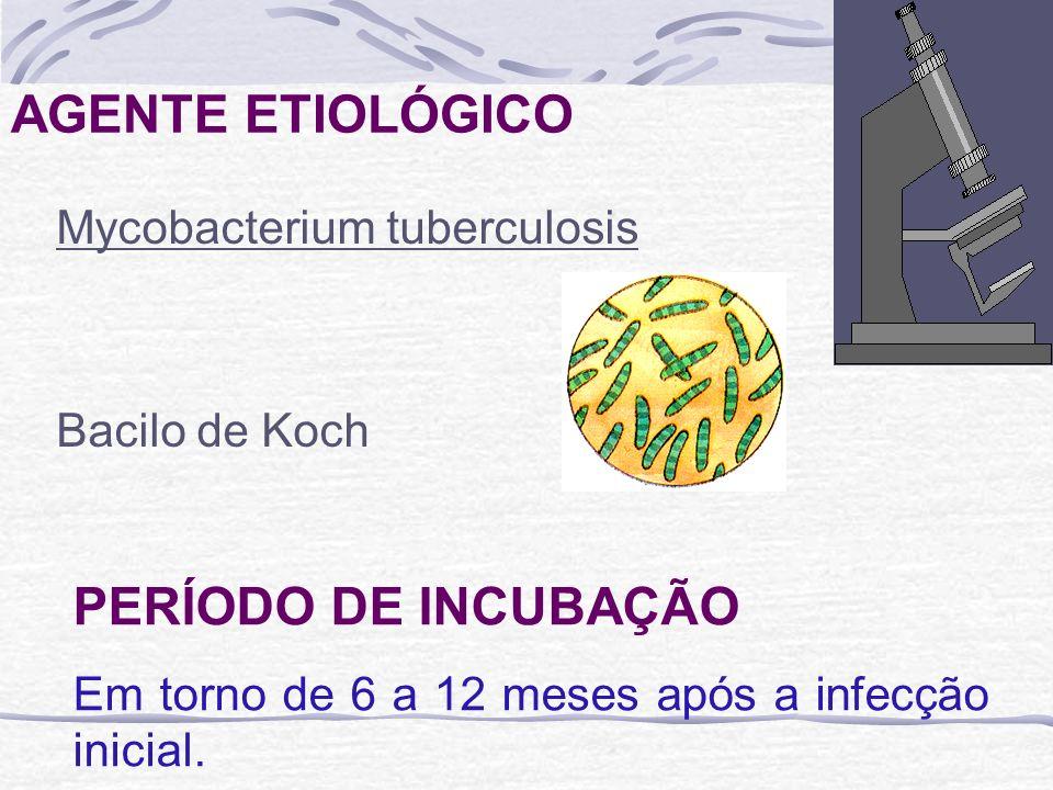 AGENTE ETIOLÓGICO Mycobacterium tuberculosis Bacilo de Koch PERÍODO DE INCUBAÇÃO Em torno de 6 a 12 meses após a infecção inicial.