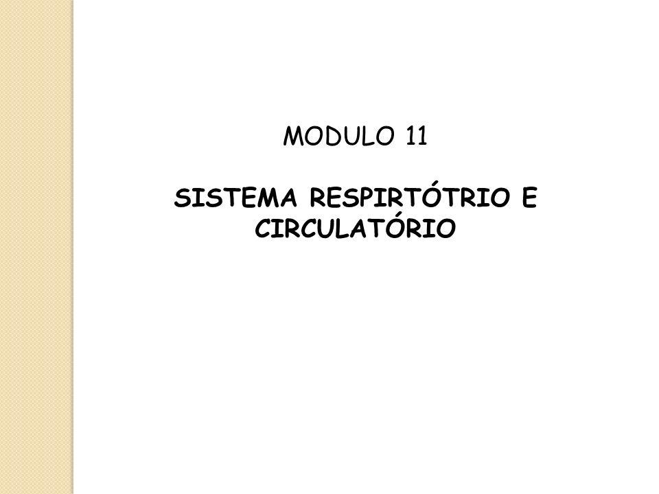 MODULO 11 SISTEMA RESPIRTÓTRIO E CIRCULATÓRIO