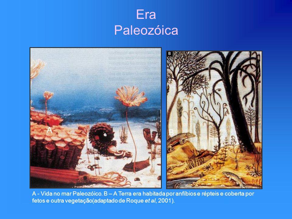 Era Paleozóica A - Vida no mar Paleozóico. B – A Terra era habitada por anfíbios e répteis e coberta por fetos e outra vegetação(adaptado de Roque et