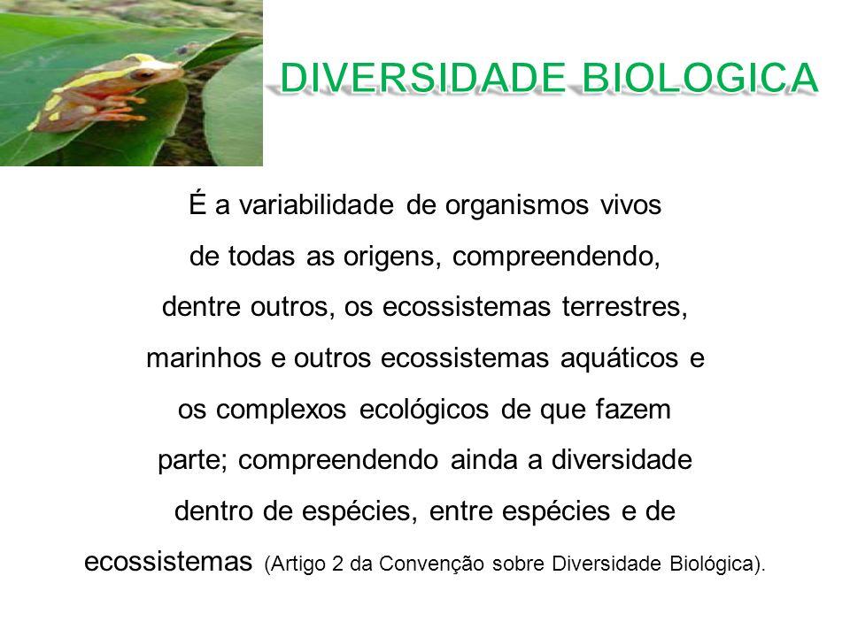 É a variabilidade de organismos vivos de todas as origens, compreendendo, dentre outros, os ecossistemas terrestres, marinhos e outros ecossistemas aq