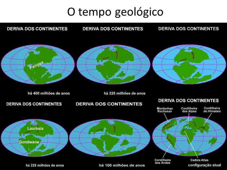 ERAS GEOLÓGICASPERIODOSDURAÇÃO OCORRENCIAS Pré-Cambriana ou primitivaArqueozóico e Proterozóico4 bilhões de anos atrás Formação dos escudos cristalinos e das rochas magmáticas.