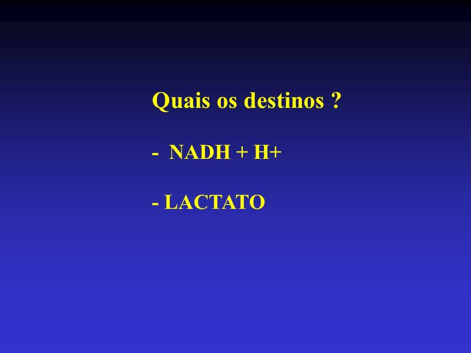 Destinos dos NADH + H + TF ALTA INTENSIDADE METAB ANAERÓBIO TF MODERADO METAB AERÓBIO