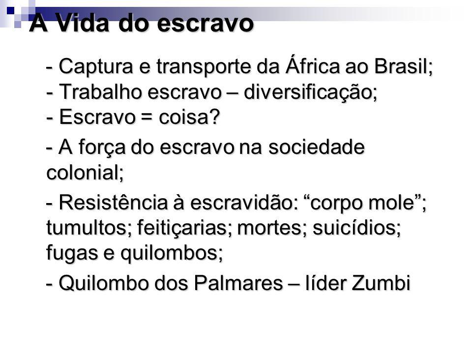 A Vida do escravo - Captura e transporte da África ao Brasil; - Trabalho escravo – diversificação; - Escravo = coisa? - Captura e transporte da África