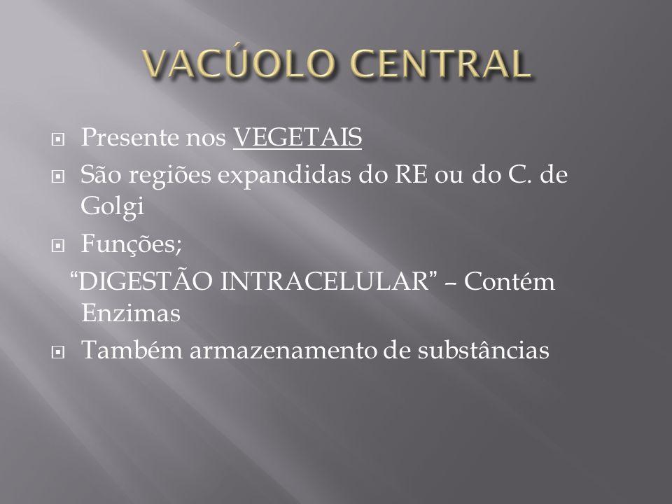 Presente nos VEGETAIS São regiões expandidas do RE ou do C.